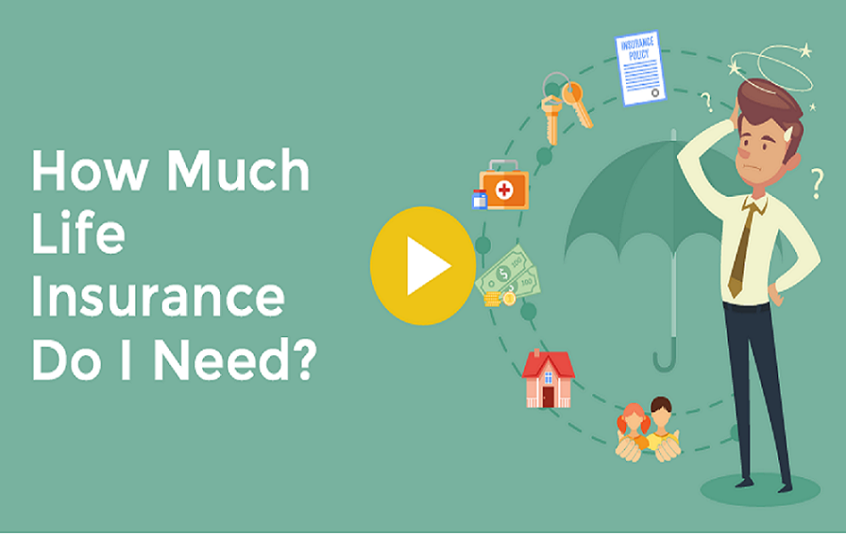 calculate insurance life a pro